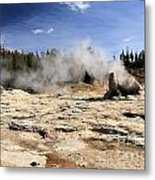 Giant Geyser Group Metal Print