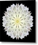 Giant White Dahlia Flower Mandala Metal Print by David J Bookbinder