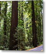 Giants And The Road Metal Print