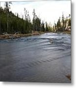 Gibbon River Metal Print