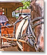 Giddy Up Metal Print