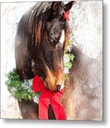 Gift Horse Metal Print by Sari ONeal