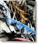 Gifts From Nature Metal Print