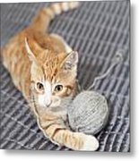 Ginger Cat With Yarn Ball Metal Print