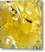 Ginko Tree Metal Print