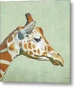 Giraffe Mug Shot Metal Print