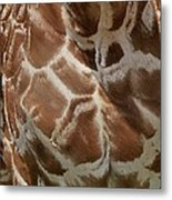 Giraffe Patterns Metal Print