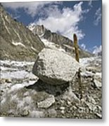 Glacial Moraine Boulder, French Alps Metal Print