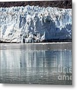 Glacier Bay National Park Metal Print