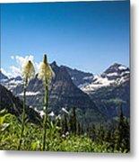 Glacier Grass Metal Print