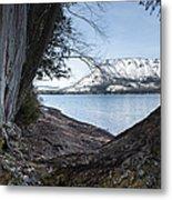 Glacier Park View Metal Print