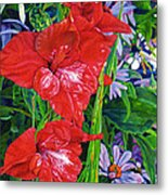 Gladiola And Echinacea Metal Print
