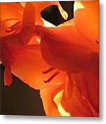 Gladiola Close Up 3 Metal Print