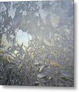 Gladiolas In Ice Metal Print by Jaime Neo