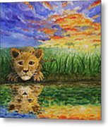 Glancing In The Water Metal Print