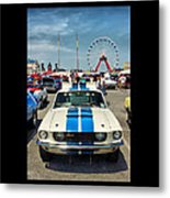 Gleaming In The Sun Metal Print