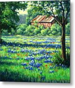 Glen Rose Bluebonnets Metal Print
