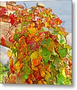 Glorious Autumn Leaves Metal Print