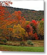 Glorious Fall Leaves Metal Print