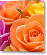 Glorious Roses Metal Print