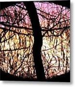 Glorious Silhouettes 3 Metal Print