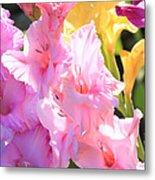 Glorious Summer Gladiolus Metal Print