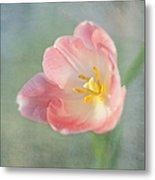 Glow Within-pink Tulip Metal Print