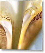 Glowing Details. Macro Iris Series Metal Print