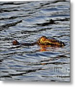 Glowing Gator Metal Print