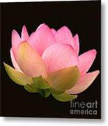 Glowing Lotus Square Frame Metal Print