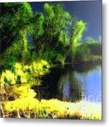 Glowing Pond On A Foggy Night Metal Print by Ann Almquist