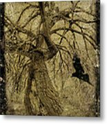 Gnarled And Twisted Tree With Crow Metal Print