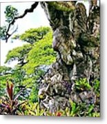 Gnarled Tree  Metal Print