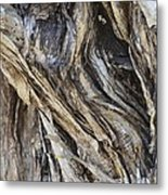 Gnarly Metal Print by AnnaJo Vahle