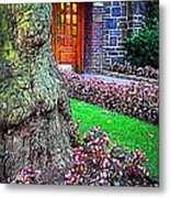 Gnarly Tree With Flowers Metal Print