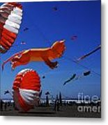 Go Fly A Kite 1 Metal Print
