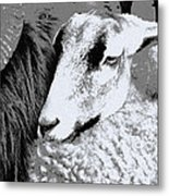 Goat Snuggled In With Family Metal Print