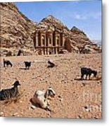 Goats In Front Of The Monastery At Petra In Jordan Metal Print