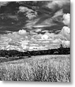 God's Country In Monochrome Metal Print