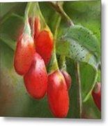 Gojo Berries Metal Print