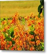 Gold And Orange Landscape Metal Print