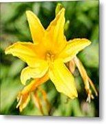 Gold Flower Metal Print