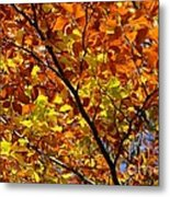 Gold Leaves Of Autumn Metal Print