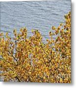 Gold Leaves Metal Print