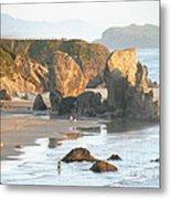 The Oregon Coast Metal Print
