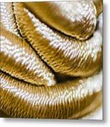 Golden Art Metal Print