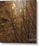 Golden Autumn Abstract Sky Metal Print