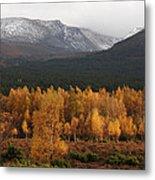 Golden Autumn - Cairngorm Mountains Metal Print