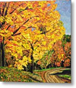 Golden Autumn Colors Metal Print