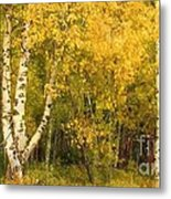 Golden Autumn Forest Mixed Media Painting Metal Print